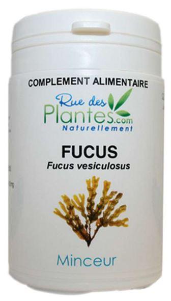 Fucus compl ment alimentaire 120 g lules - Complement alimentaire coupe faim ...