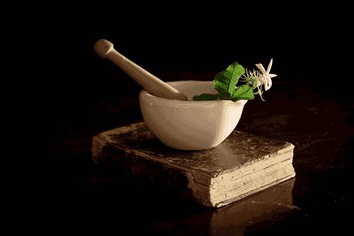 livre et bol de plantes pour la phytothérapie