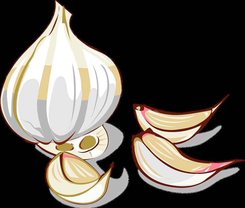 gousse ail