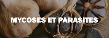 Ail noir mycose et parasite