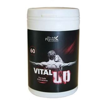 Vital'Up 60 gélules