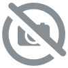 Tisane Tonique 100g